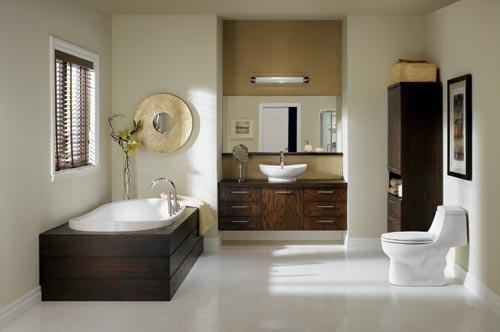 Bath Tubs Installation and Plumbing Services. Bathtubs in Naples FL